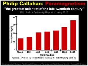 Philip Callahan-Paramagnetism