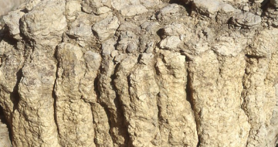 columnar 2