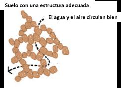 estructura 2