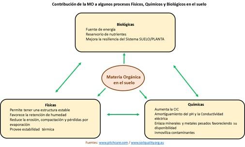 Contribución de la MO a algunos procesos Físicos, químicos y Biológicos en el suelo