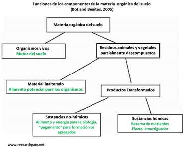 funciones de componentes de la materia organica del suelo