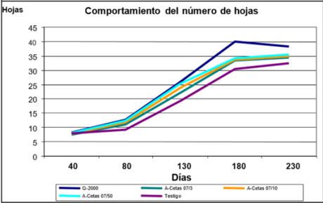 grafica de tabla2