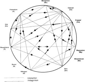 diagrama de mulder