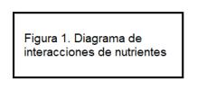 letrero figura 1 Diagrama de interacciones de nutrientes