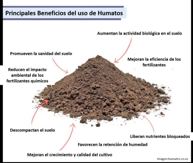 principales beneficios del uso de humatos